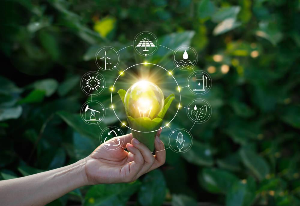 De cómo una página web puede contribuir a la sostenibilidad